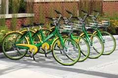 2018_07_26-LimeBikes-at-Nexus_2-CROP